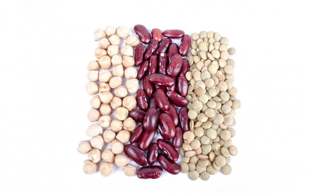 Beans, Your Belly and Living Longer…